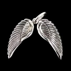Alas de Angel de plata