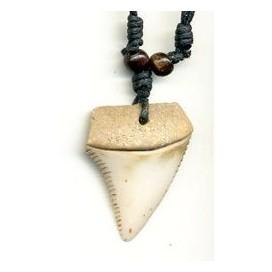 Diente de Tiburon tallado en hueso