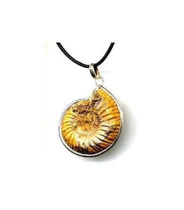 Fosil Ammonites montado en plata
