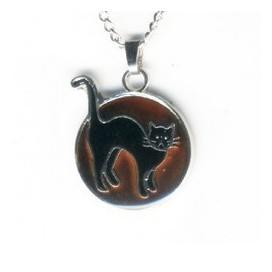 El Gato negro q. Cambia de color con tu energia