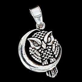 Owl. Symbol of Wisdom