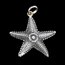 Estrella de mar del amor.